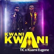 Download Tic Tac X Kuami Eugene – Kwani Kwani (Remix)