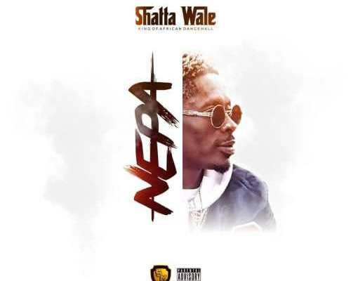 Download New Music From Shatta Wale – Nepa