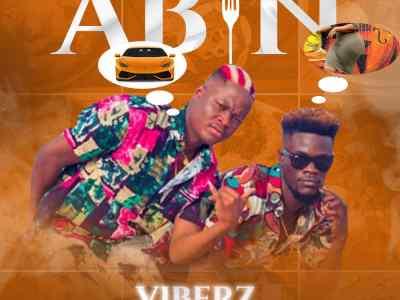 Viberz - Abin (Prod by Brainworkx)