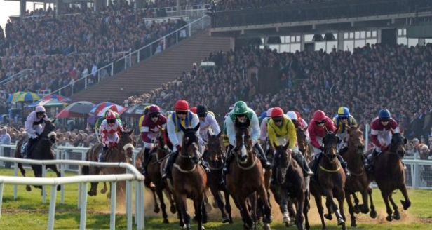 Biggest Irish Horse Racing Events Not To Be Missed