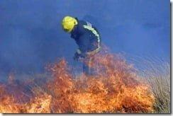 Gorse fires decimating bird populations in Ireland -- Image by Pat-Flynn via IrishWeatherOnline.com