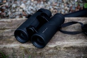 Docter 8x42 ED Review Ireland's Wildlife