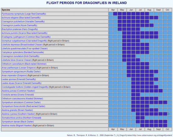 Flight periods for Dragonflies in Ireland