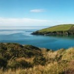 New wildlife walks get you closer to nature