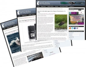 Wildlife and Nature Writing Ireland