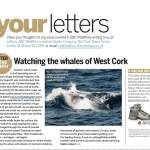 Fame at last! BBC Wildlife Magazine Letter of the Month