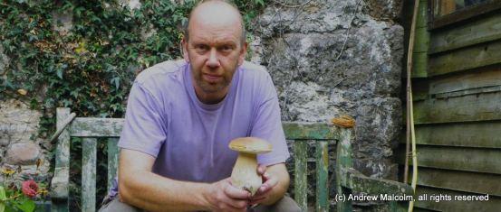 Mushroom hunting in Ireland