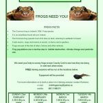Cork wildlife group needs frog survey volunteers