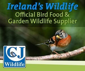 IW Official Bird Food & Garden Wildlife Supplier