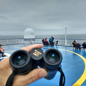 Whale Watching from Commercial Ferries