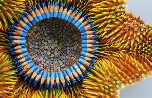 bloem-van-potloden-300x195