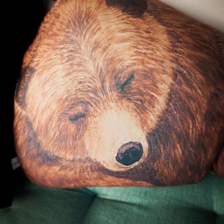Bärenkissen