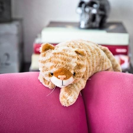 Schrödingers Katze Plüschtier als Geschenk für Katzenmenschen