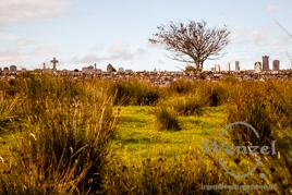 Friedhof –  Isle of Skye