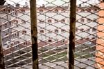 Neue Sinnlichkeit - JVA Magdeburg - die Zellen sind vergeben
