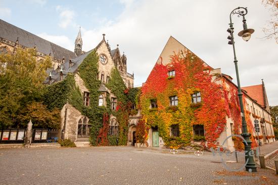 Magdeburg im Herbst - Dom