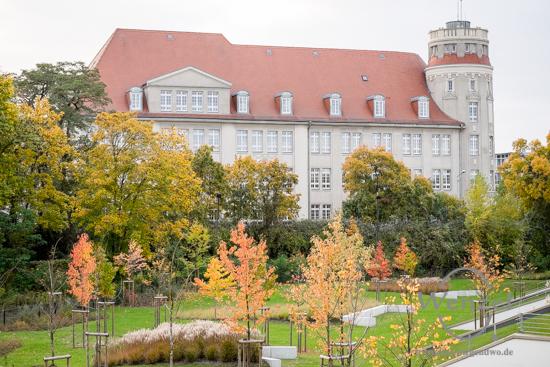 Magdeburg im Herbst