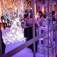 Winterzauber-Gala 2015 / Kulturwerk Fichte