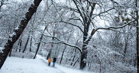 Winter im Rotehorn Stadtpark