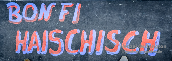 ORWOhaus - Festival 2016 - Bonfi Haischisch –  Foto Wenzel-Oschington.de