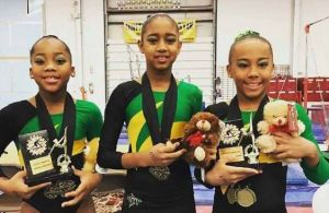 Jamaica Gymnastic Association has endorsed the news of the postponement of the Olympic Games