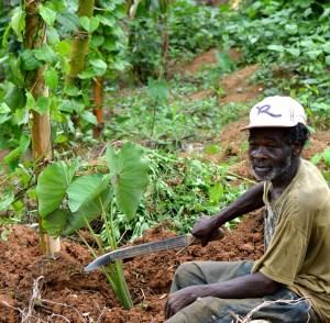 Farmers hopeful that 2021 will bring them joy