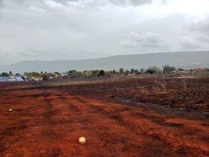Fire damage at farms in Flagaman in excess of $100 m