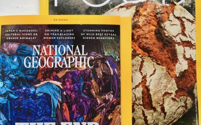 Nat Geo Traveller Food Magazine