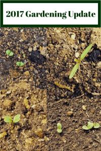 2017 Gardening Update