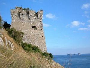 torre-guardiola