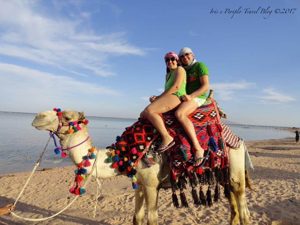 Foto in sella al cammello