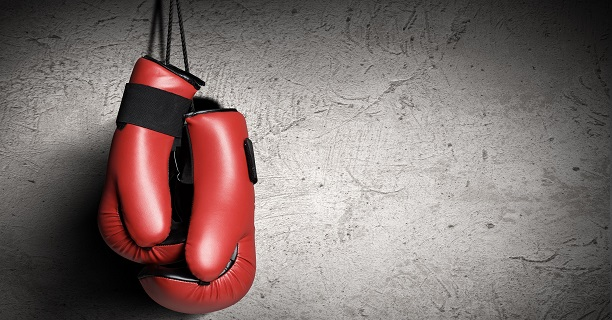 RESULTS: The Liffey Crane Hire Irish Boxer of the Month