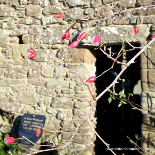Ancient door in an old Irish church