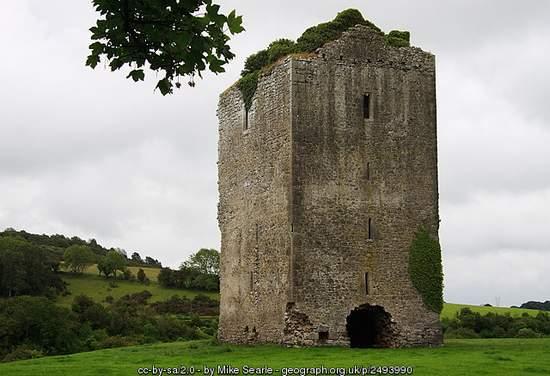 Gortnaclea Castle County Laois Ireland