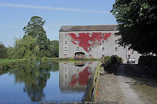 Old mill and pond outside Durrow County Laois Ireland