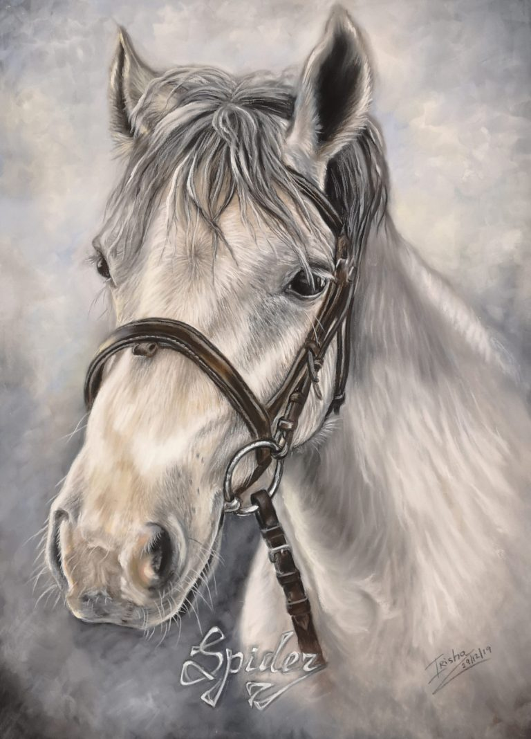 white horse portrait commission uk