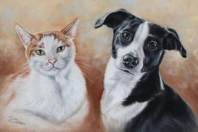 cat and dog portrait