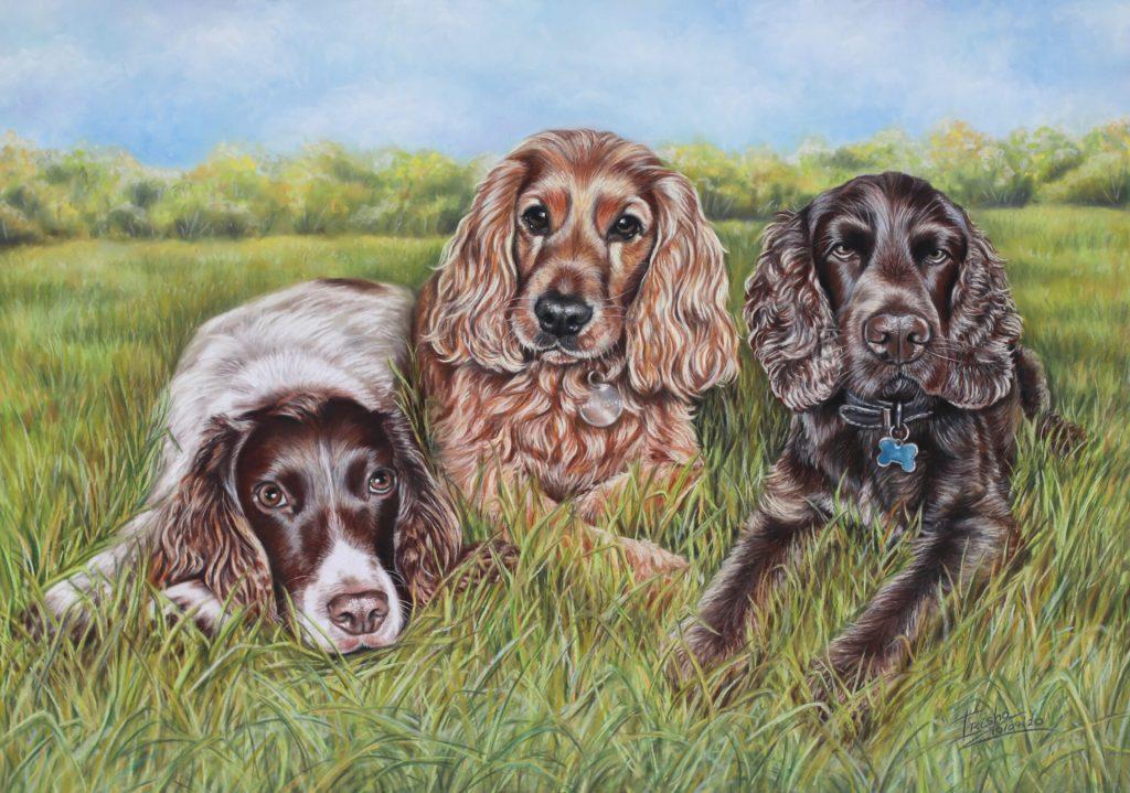 three springer spaniel portrait painting in pastel