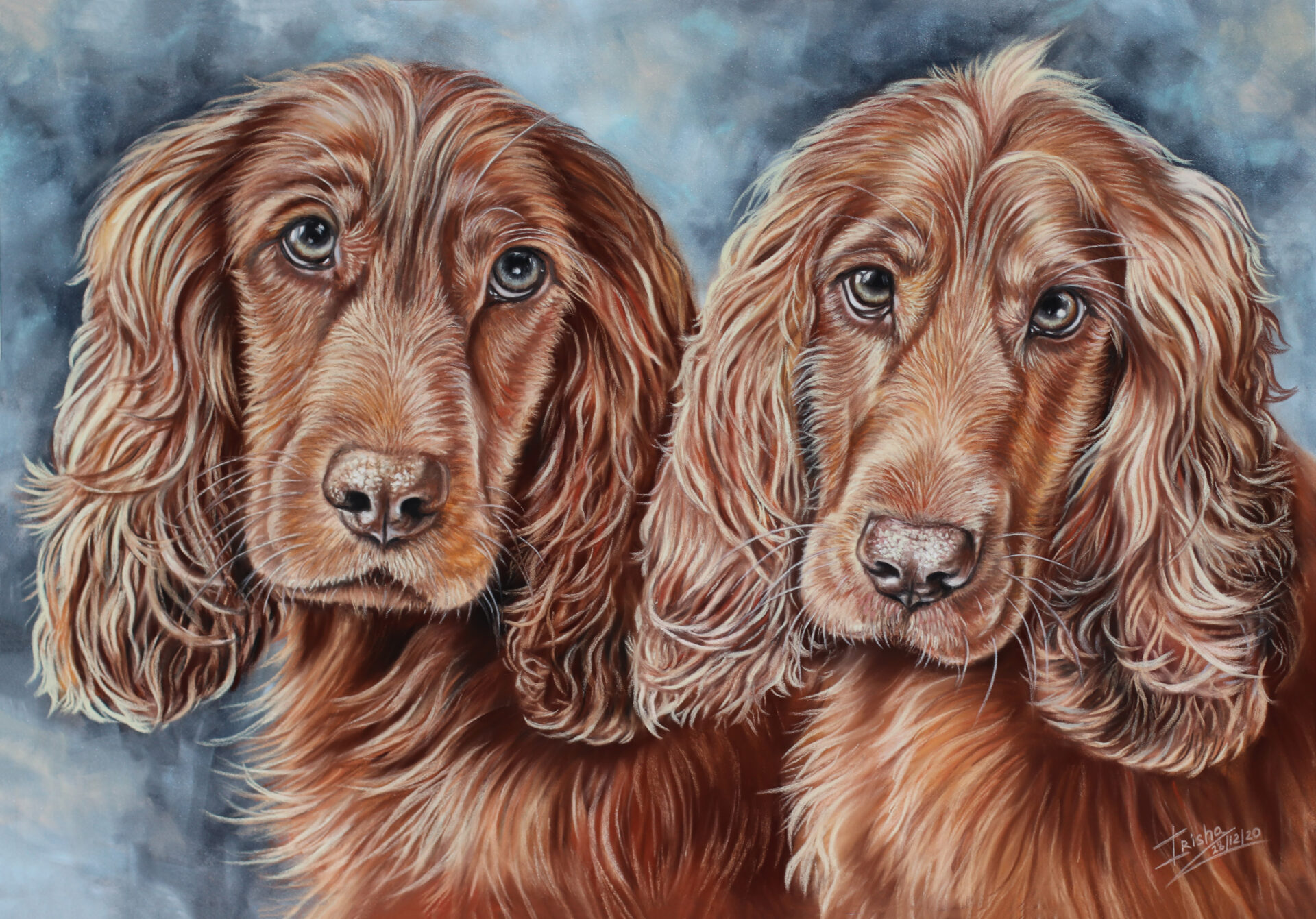 Ruby & Rosie, Cocker Spaniels