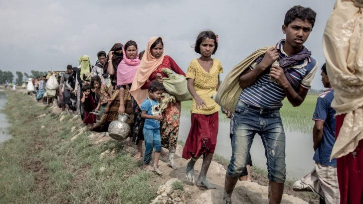 Rohingya refugees should return with full citizenship – Caritas