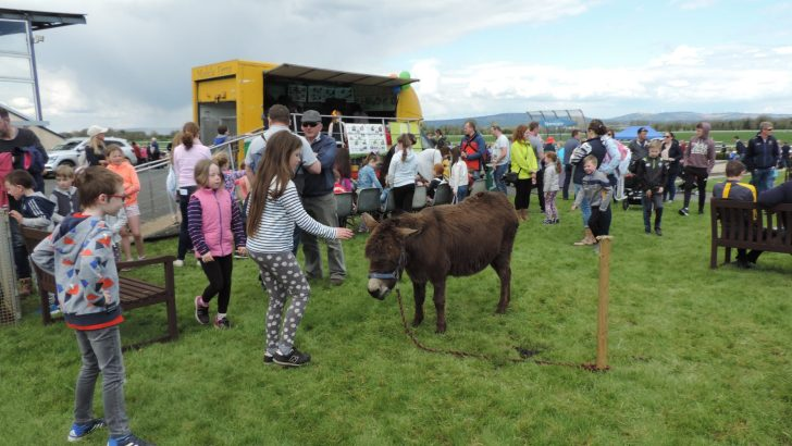 Cashel & Emly Family Fun Day – joy for all in Tipp Racecourse