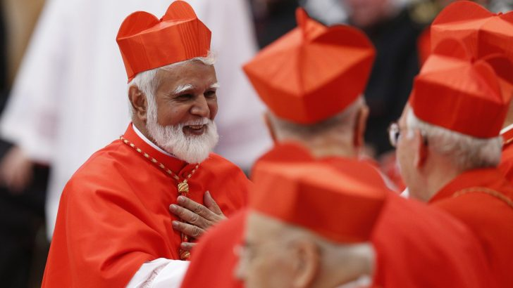 Climate in Islamic nation requires restraint, says Pakistan's new cardinal