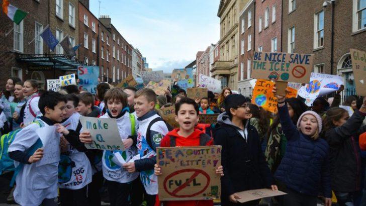 Govt climate emergency veto 'deeply undemocratic'
