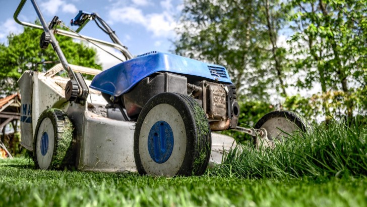 Trimming the longest of late summer lawns