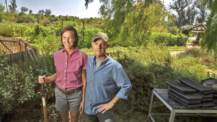 Life-affirming tale of agrarian regeneration