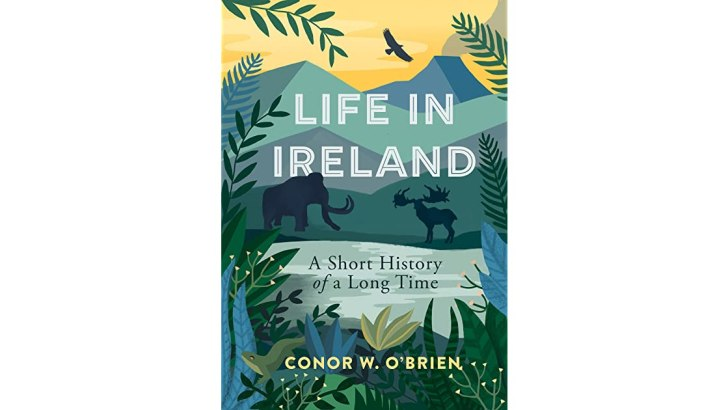 Time is running out on the millennia of life in Ireland