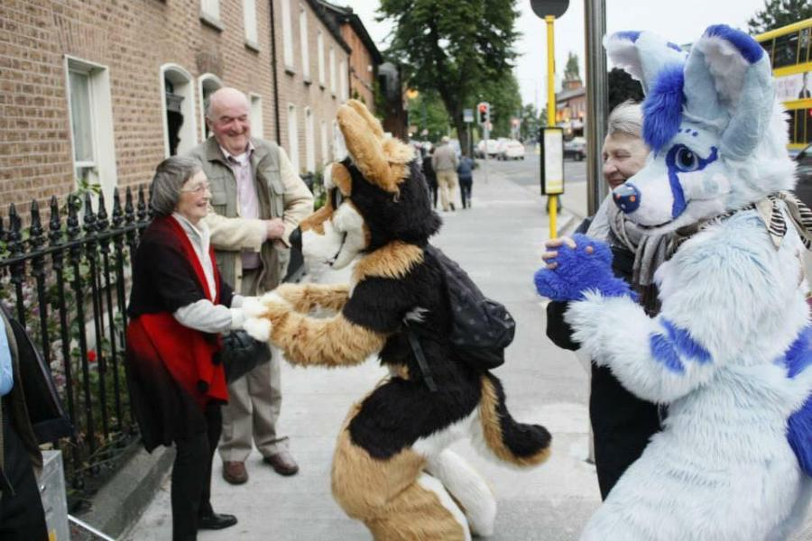 Dublin Fursuit Furmeet 2015
