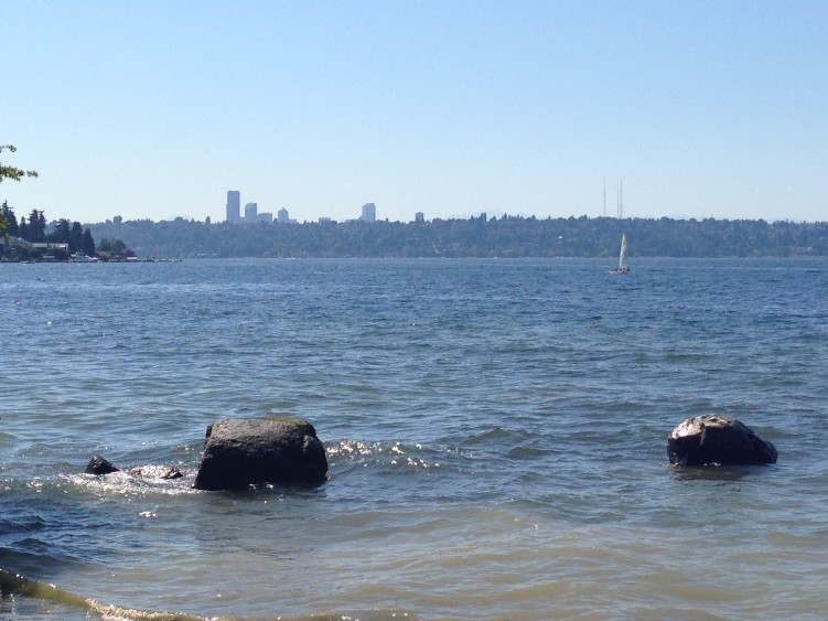 Seattle Skyline from Luther Burbank Park