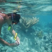 Snorkeling - Rugby Tours To Barcelona, Irish Rugby Tours