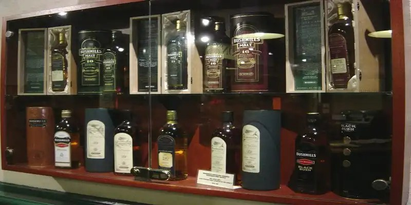 Bushmills Whiskey Distillery - Irish Rugby Tours, Rugby Tours To Belfast